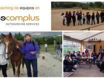 ¿El caballo ganador en Necomplus?: El clima laboral